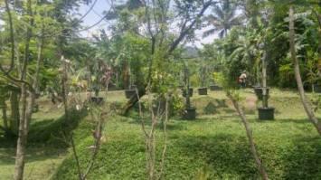 Kavling Agrowisata