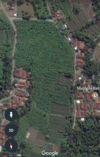 Taman Darussalam Dramaga - Tanah